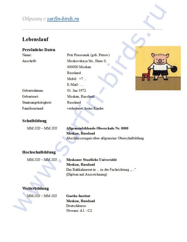 Биография   Lebenslauf для Посольства