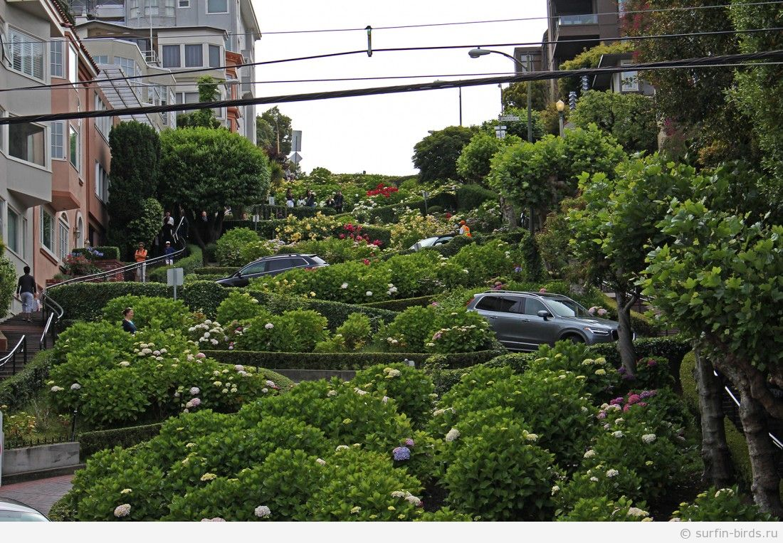 Сан Франциско. Часть 12. Гуляем в хорошую погоду.