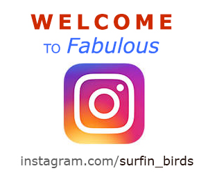 Биография - Lebenslauf для Посольства, Иммиграция в Германию, визовые вопросы, блог об эмиграции - Surfin Birds