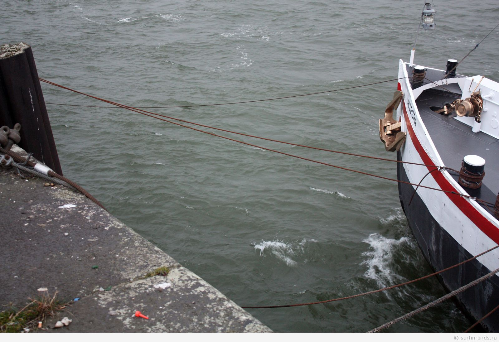 Рейн, чистая вода