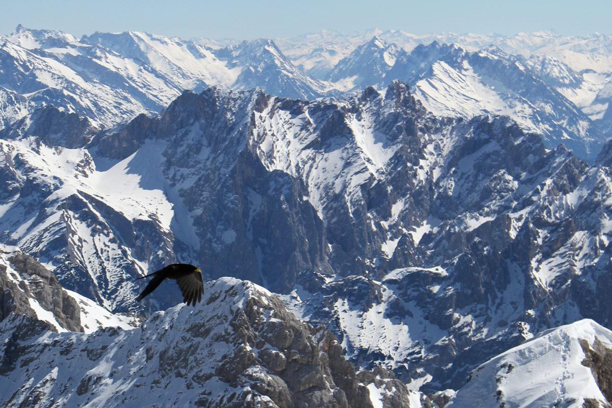 Панорама Цугшпитце / Zugspitze